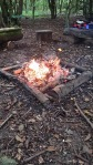 forest school fire
